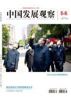 中国发展观察