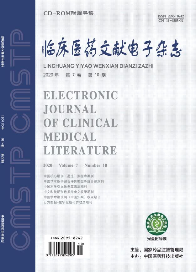 临床医药文献电子杂志