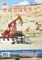 新疆石油天然气